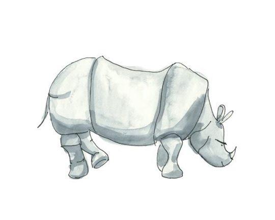 Acuarela rinoceronte 24x18cm Serie Animales de Elena Calonje