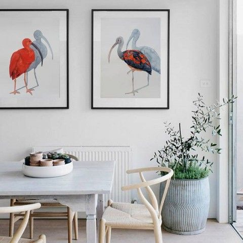 two scarlet ibis watercolors by elena calonje